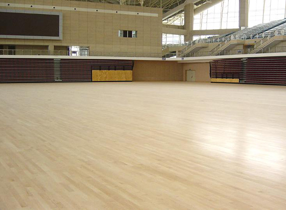 广东惠州体育中心体育馆