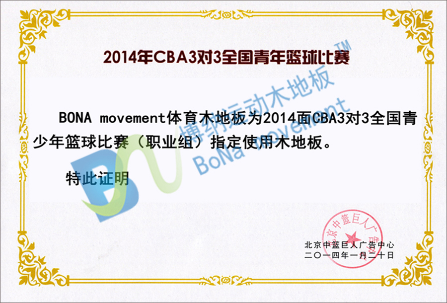2014年CBA3对3全国青年篮球比赛